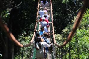 Hier zie je een groep bezoekers die door het dierenpark wordt rondgeleidt