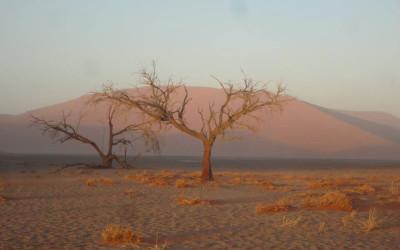 Op reis met Nomad naar… Namibië